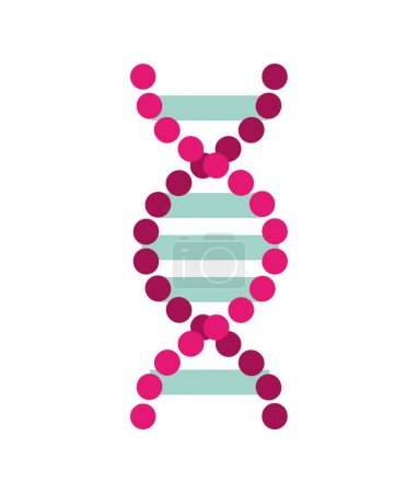 Illustration for Dna molecule isolated icon vector illustration design - Royalty Free Image