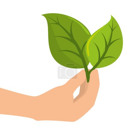 Illustration for Leafs plant ecology icon vector illustration design - Royalty Free Image