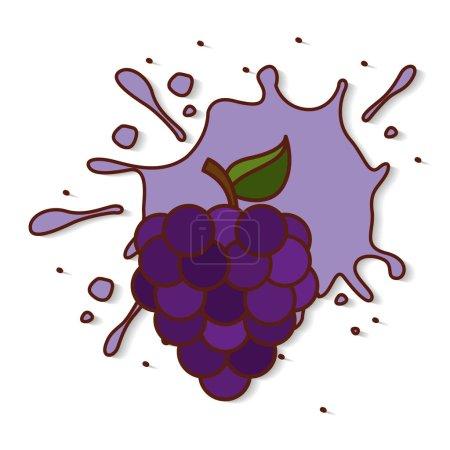 fresh fruit splash juice