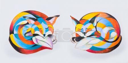 Photo pour Ensemble de croquis de renards multicolores sur fond blanc . - image libre de droit