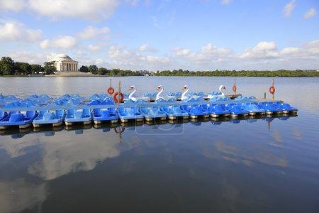 Tidal Basin paddle boats Washington DC