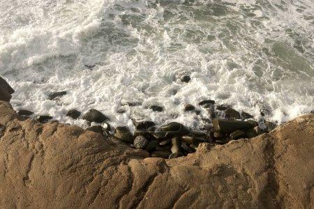 Pacific Ocean Waves Crashing on Shore