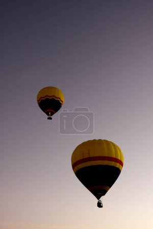 Two Hot Air Balloons in the Morning Sky