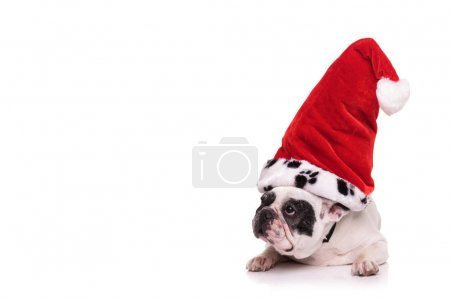 french bulldog wearing santa claus hat looks to side