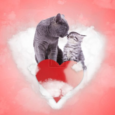 in love cats are kissing on a heart shaped cloud