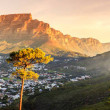 Panoramic view of Cape Town, Table Mountain and Li...