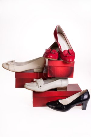 Isolated Woman's Shoes