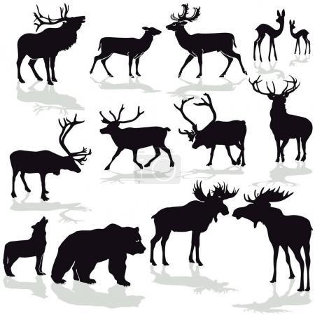 Deer and moose, reindeer silloette vector image