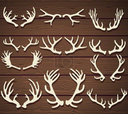 Set of deer antlers on the wooden rustic wooden