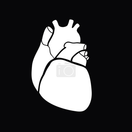 Schematic white human heart on black background, v...