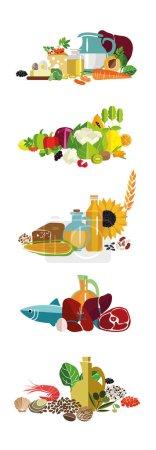 Fundamentals of balanced diet