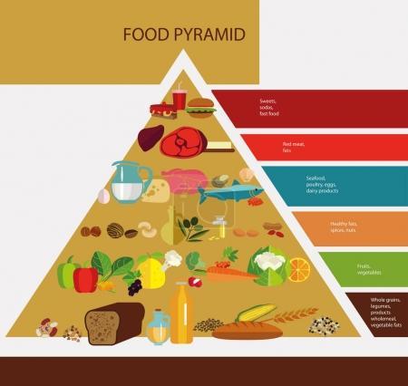 chart of food pyramid