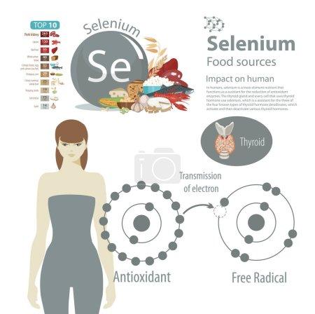 Selenium. Food sources.
