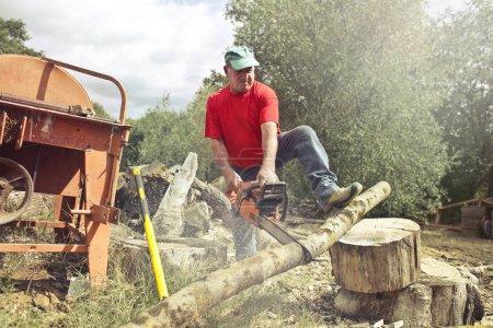 Photo pour Homme coupe un tronc avec une scie à chaîne - image libre de droit
