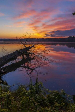 Photo pour Soleil de lever de soleil au-dessus de l'étang, Trebon, République tchèque - image libre de droit