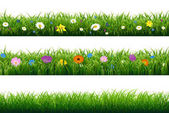 Grass Borders With Flowers Vector Illustration