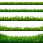 Green Grass Frame Big Set, Vector Illustration...