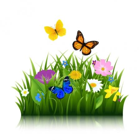 Summer Flowers With Butterflies