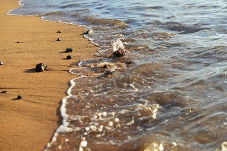 Photo for Close view of stones on sand washed by sea waves - Royalty Free Image