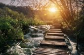 Panorama of wooden bridge in the green forest at Plitvice lakes, Croatia