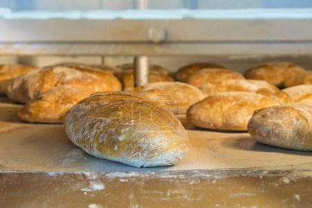 Photo for Loaves of bread inside a wood-burning oven in a bakery - Royalty Free Image