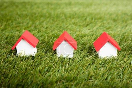 Photo pour Modèles de maison disposés en rangée sur champ herbeux - image libre de droit
