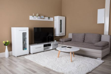 Apartment With Television And Sofa