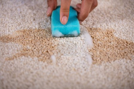 Janitor Cleaning Stain On Carpet With Sponge