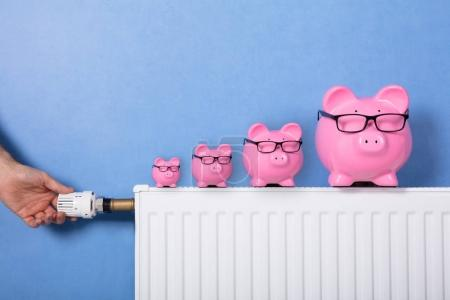 Close-up Of A Person's Hand Adjusting Thermostat With Piggy Banks Wearing Eyeglasses On Radiator