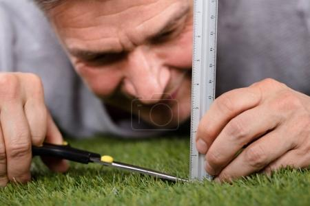 Photo for Close-up Of A Man Using Measuring Scale While Cutting Grass With Scissors - Royalty Free Image