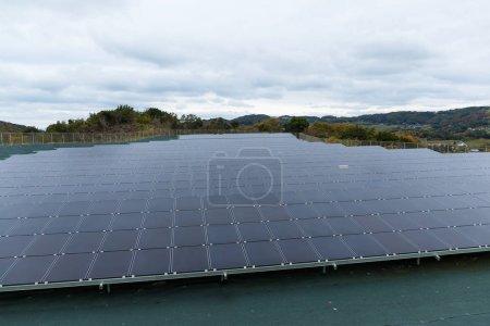 Solar energy panel plant