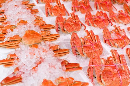 Iced king crabs in market