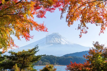 Autumn season and Mount fuji
