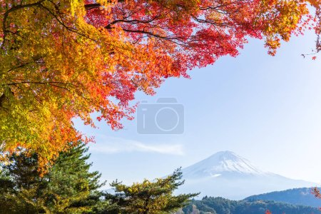 Mt. Fuji in autumn at Kawaguchiko lake