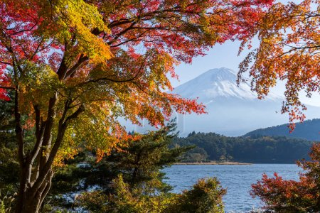 Mt. Fuji in autumn season