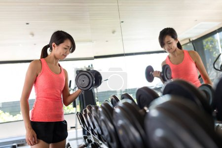 Sport Woman training with dumbbell