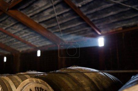 Wooden beer barrels at indoor