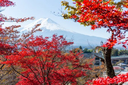 Mount Fuji and red maple trees
