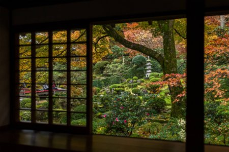 Japanese wooden house with autumn landscape