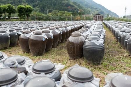 Production of Vinegar in Barrels