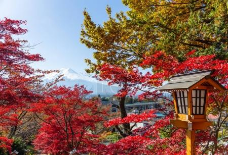 Japanese temple and Fuji mountain