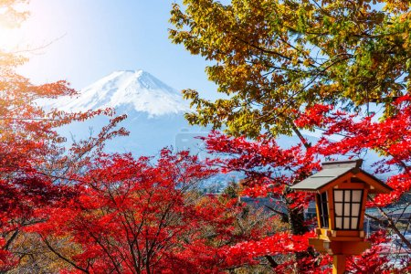 Mount Fuji and maple trees