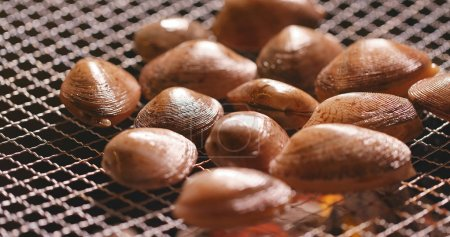 Fresh clams on barbecue fire