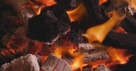 Coal burns in the fire close up