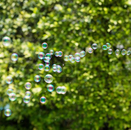 Soap bubbles on green background