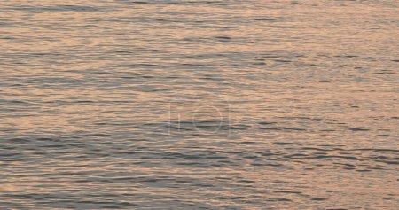 Photo pour Mer au crépuscule en soirée - image libre de droit