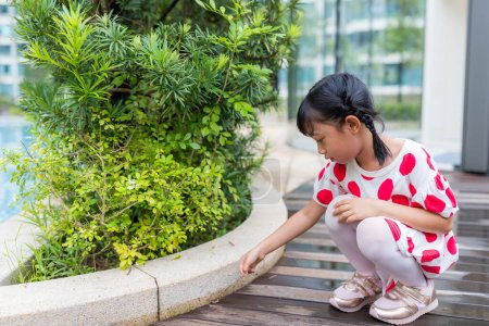 Photo for Little girl look at insect outdoor - Royalty Free Image