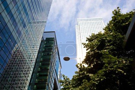 Modern Skyscrapers in City