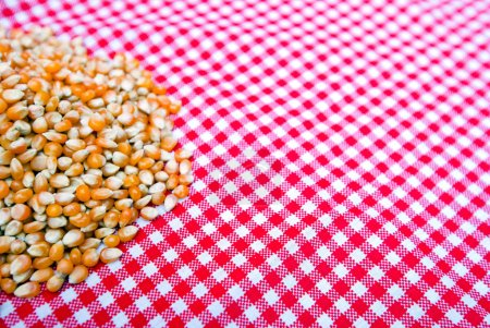 Photo for Corn kernels close-up on a red and white tablecloth - Royalty Free Image