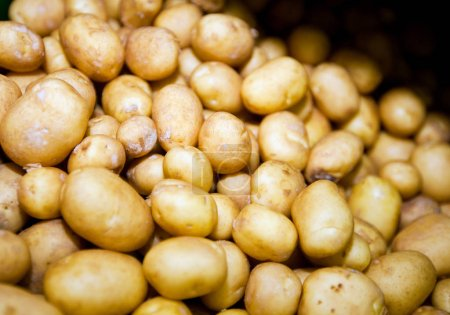 Photo for Close-up of fresh potatoes in supermarket - Royalty Free Image